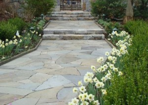 Stone paving set in a random pattern makes a great garden walk. Here it is bordered by low bluestone edging. Design and installation by Jan Johnsen, Johnsen Landscapes & Pools.