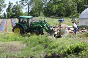 Harvesting stone at Still Life Farm in Hardwick, MA.