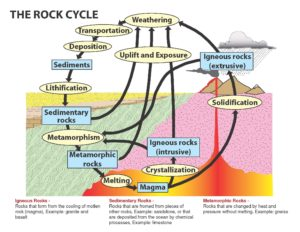 The rock cycle. Photo courtesy of the South Carolina Department of Natural Resources.