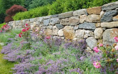A Celebration of Natural Stone: Why I Love Stone Walls