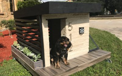 These Natural Stone Houses Are Going to the Dogs